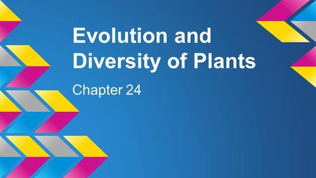 Evolution and Diversity of Plants Chapter 24. Evolution Modern day plants evolved from freshwater green algal species ● Evidence o both contain chlorophyll.