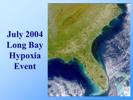 July 2004 Long Bay Hypoxia Event. Flounder Catches Water Quality SCDNR CCU Temperature/Wind/Current Potential Hypotheses Other Areas Experiencing Hypoxia.