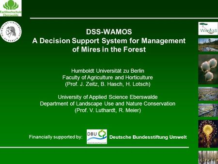 DSS-WAMOS A Decision Support System for Management of Mires in the Forest Financially supported by: Deutsche Bundesstiftung Umwelt Humboldt Universität.