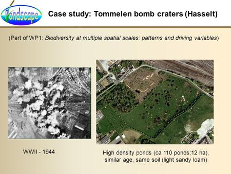 Case study: Tommelen bomb craters (Hasselt) WWII - 1944 High density ponds (ca 110 ponds;12 ha), similar age, same soil (light sandy loam) (Part of WP1: