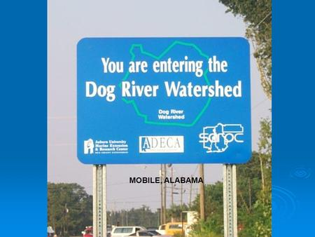 MOBILE, ALABAMA. Dog River Alabama Dog River and its tributaries drain most of Mobile, Alabama. Those tributaries range from relatively pristine streams.