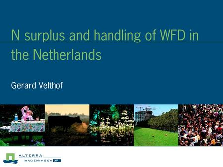 N surplus and handling of WFD in the Netherlands Gerard Velthof.
