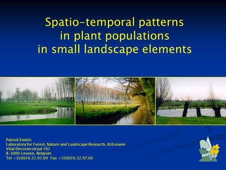Spatio-temporal patterns in plant populations in small landscape elements Patrick Endels Laboratory for Forest, Nature and Landscape Research, KULeuven.