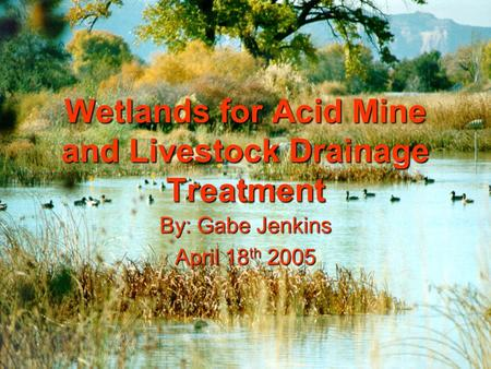 Wetlands for Acid Mine and Livestock Drainage Treatment By: Gabe Jenkins April 18 th 2005.