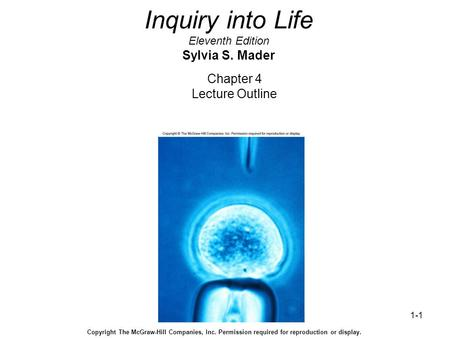 1-1 Inquiry into Life Eleventh Edition Sylvia S. Mader Chapter 4 Lecture Outline Copyright The McGraw-Hill Companies, Inc. Permission required for reproduction.