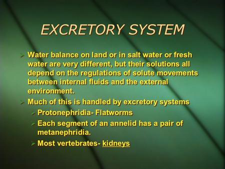 EXCRETORY SYSTEM  Water balance on land or in salt water or fresh water are very different, but their solutions all depend on the regulations of solute.