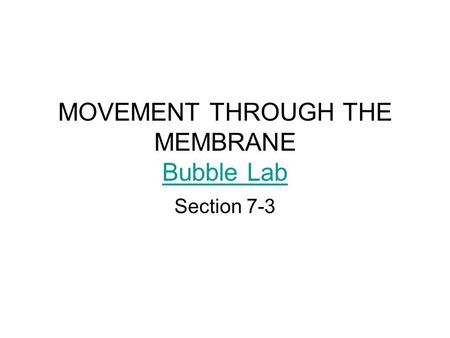 MOVEMENT THROUGH THE MEMBRANE Bubble Lab
