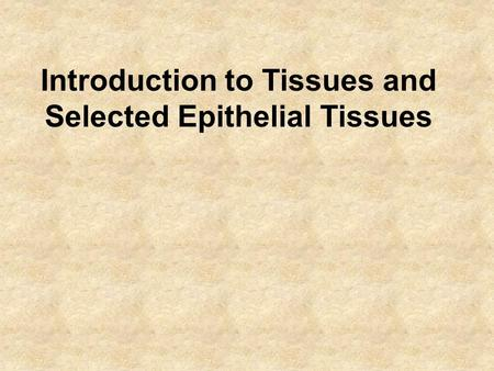 Introduction to Tissues and Selected Epithelial Tissues.