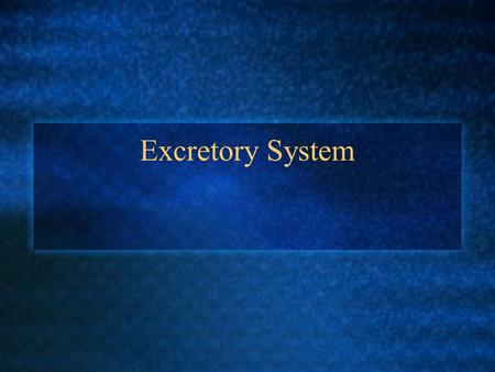 Excretory System. Excretion rids the body of metabolic wastes.