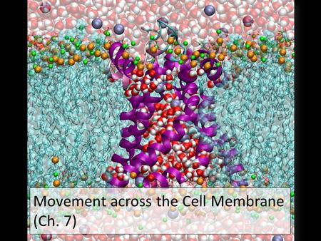 2007-2008 Movement across the Cell Membrane (Ch. 7)