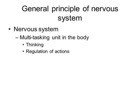 General principle of nervous system Nervous system –Multi-tasking unit in the body Thinking Regulation of actions.