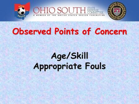 Observed Points of Concern Age/Skill Appropriate Fouls.