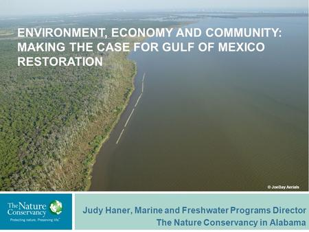 Judy Haner, Marine and Freshwater Programs Director The Nature Conservancy in Alabama © JoeBay Aerials ENVIRONMENT, ECONOMY AND COMMUNITY: MAKING THE CASE.