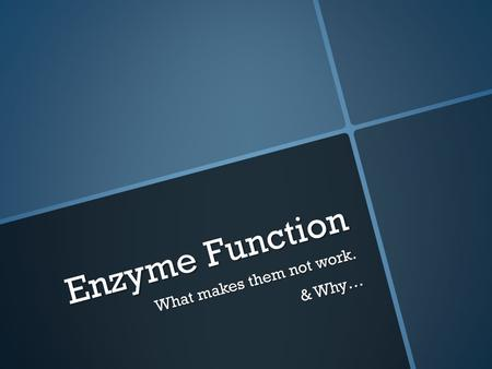 Enzyme Function What makes them not work. & Why….