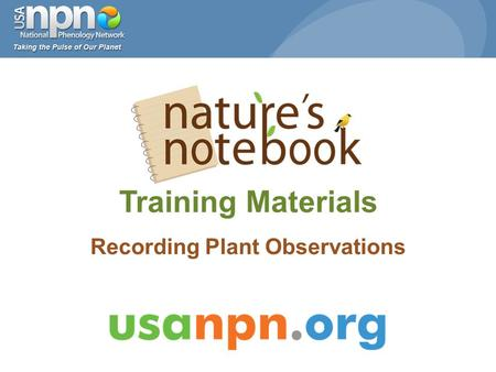 Training Materials Recording Plant Observations. www.usanpn.org/participate/guidelines 2 1.Select a site 2.Select plant and animal species 3.Select individual.