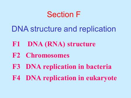 Worksheet Dna Replication Worksheet Answers dna rna replication worksheet key intrepidpath functions of deepa john harini chandra affiliations which transcription and translation 1 with key