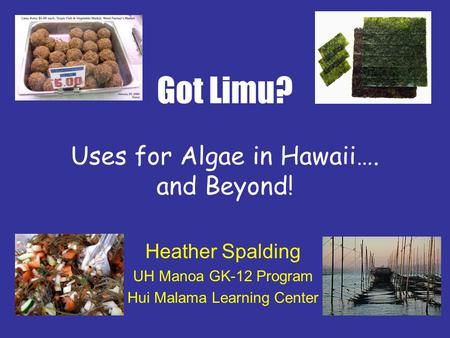 Got Limu? Uses for Algae in Hawaii…. and Beyond!