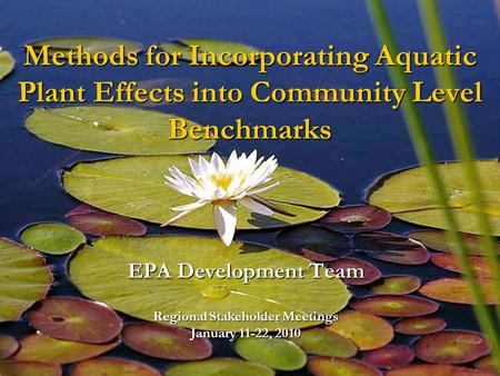 Methods for Incorporating Aquatic Plant Effects into Community Level Benchmarks EPA Development Team Regional Stakeholder Meetings January 11-22, 2010.