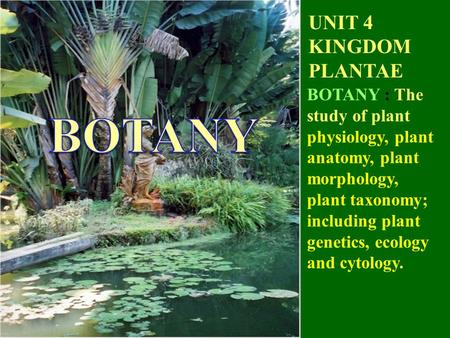 UNIT 4 KINGDOM PLANTAE BOTANY : The study of plant physiology, plant anatomy, plant morphology, plant taxonomy; including plant genetics, ecology and cytology.