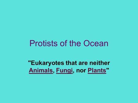 Eukaryotes that are neither Animals, Fungi, nor Plants