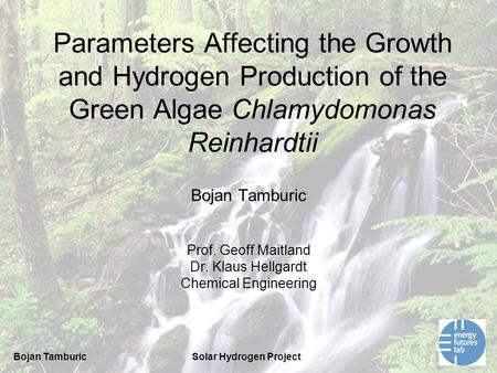 Bojan TamburicSolar Hydrogen Project Parameters Affecting the Growth and Hydrogen Production of the Green Algae Chlamydomonas Reinhardtii Bojan Tamburic.