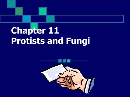 Chapter 11 Protists and Fungi An organism that belongs to the kingdom Protista Click for Term.
