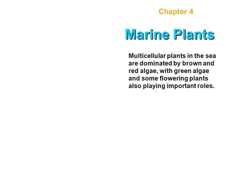 Chapter 4 Marine Plants Multicellular plants in the sea are dominated by brown and red algae, with green algae and some flowering plants also playing important.