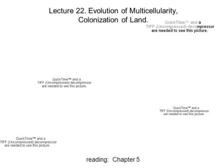 Reading: Chapter 5 Lecture 22. Evolution of Multicellularity, Colonization of Land.