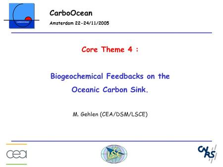 Core Theme 4 : Biogeochemical Feedbacks on the Oceanic Carbon Sink. M. Gehlen (CEA/DSM/LSCE) CarboOcean Amsterdam 22-24/11/2005.