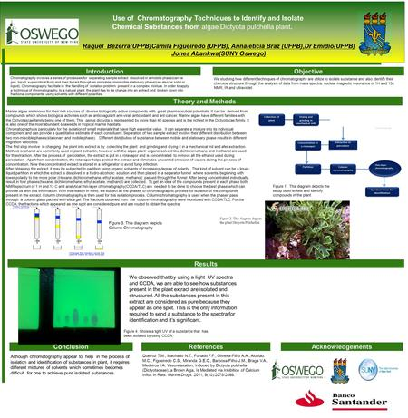 Use of Chromatography Techniques to Identify and Isolate Chemical Substances from algae Dictyota pulchella plant. Raquel Bezerra(UFPB)Camila Figueiredo.