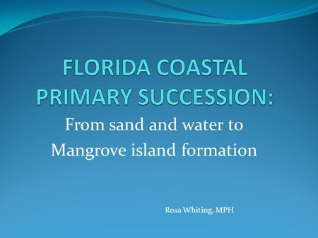 From sand and water to Mangrove island formation Rosa Whiting, MPH.