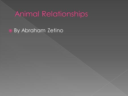  By Abraham Zetino.  Mutualism is when both organisms benefit from the relationship.  Ex: A rhino is not irritated because birds are eating fleas/bugs.