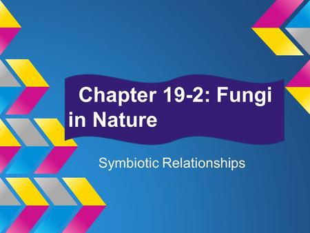 Chapter 19-2: Fungi in Nature