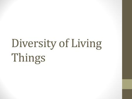 Diversity of Living Things. The Big Picture of Kingdoms BACTERIA & ARCHAEA PROTISTS FUNGI & PROTISTS ANIMALS PLANTS.