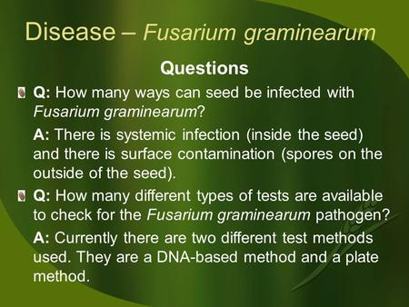 Disease – Fusarium graminearum Questions Q: How many ways can seed be infected with Fusarium graminearum? A: There is systemic infection (inside the seed)