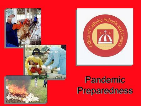 Pandemic Preparedness. STOP Potential Communicable Disease Outbreaks Influenzas Hepatitis A Cholera Typhus TB Influenzas Hepatitis A Cholera Typhus TB.