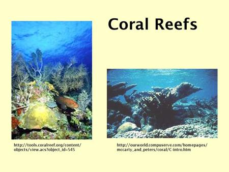mccarty_and_peters/coral/C-intro.htm Coral Reefs  objects/view.acs?object_id=545.
