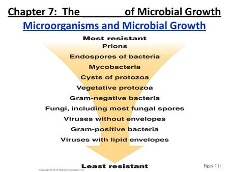 Chapter 7: The _______ of Microbial Growth Microorganisms and Microbial Growth Figure 7.11.