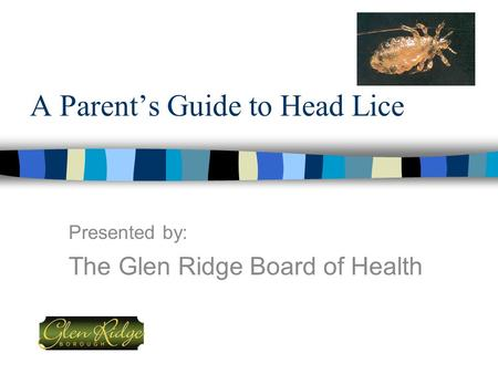 A Parent's Guide to Head Lice Presented by: The Glen Ridge Board of Health.