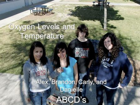 Oxygen Levels and Temperature Alex, Brandon, Carly, and Danielle ABCD's.