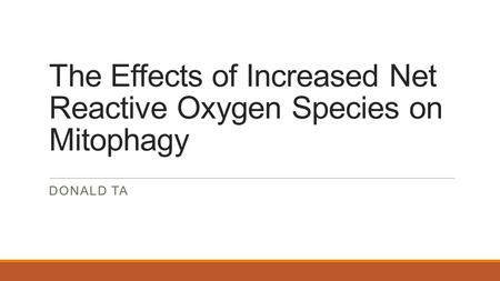 The Effects of Increased Net Reactive Oxygen Species on Mitophagy DONALD TA.