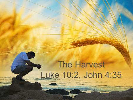 The Harvest Luke 10:2, John 4:35. The harvest truly is great But the laborers are few The laborers are few The harvest truly is great But the laborers.
