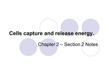 Cells capture and release energy. Chapter 2 – Section 2 Notes.