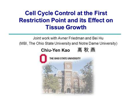 Cell Cycle Control at the First Restriction Point and its Effect on Tissue Growth Joint work with Avner Friedman and Bei Hu (MBI, The Ohio State University.