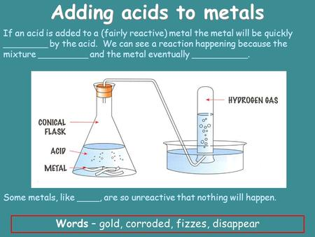 Adding acids to metals Words – gold, corroded, fizzes, disappear If an acid is added to a (fairly reactive) metal the metal will be quickly ________ by.