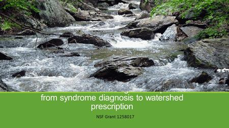 Streams in urbanizing landscapes: from syndrome diagnosis to watershed prescription NSF Grant 1258017.
