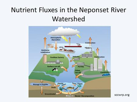 Nutrient Fluxes in the Neponset River Watershed sccwrp.org.