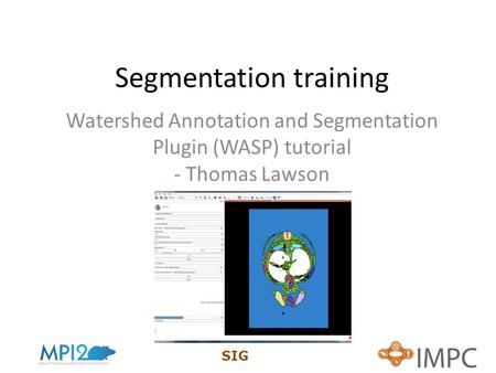 SIG Segmentation training Watershed Annotation and Segmentation Plugin (WASP) tutorial - Thomas Lawson.