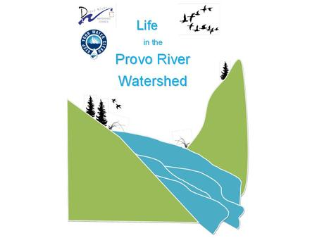 The Provo River Watershed What's Downstream?