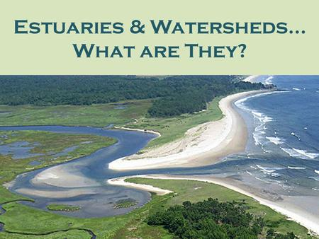 Estuaries & Watersheds… What are They?. Salmon River Estuary, Oregon Estuaries are places where freshwater from rivers meets saltwater from the ocean.